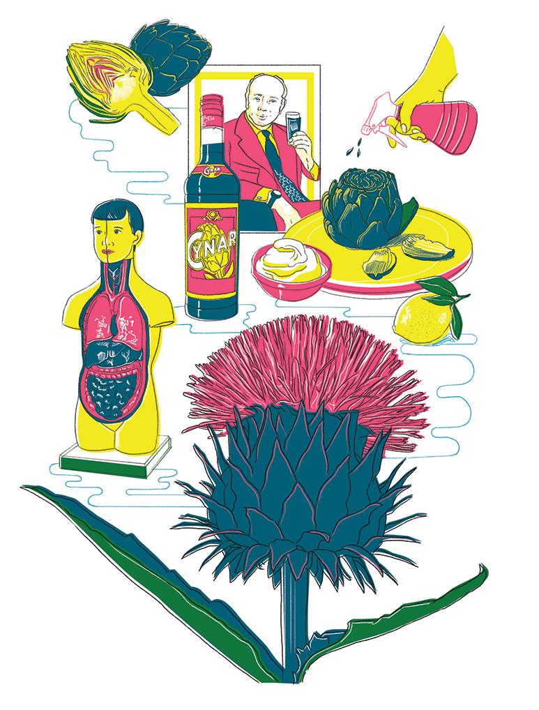 Küchenkultur Illustrationen Artischocke, Illustrations artichoke
