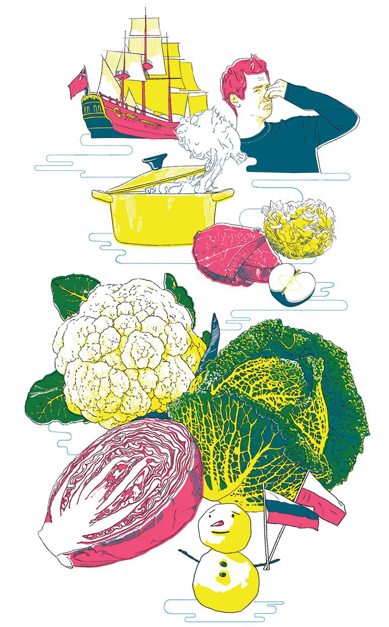 Küchenkultur Illustrationen Kohl, Illustrations cabbage