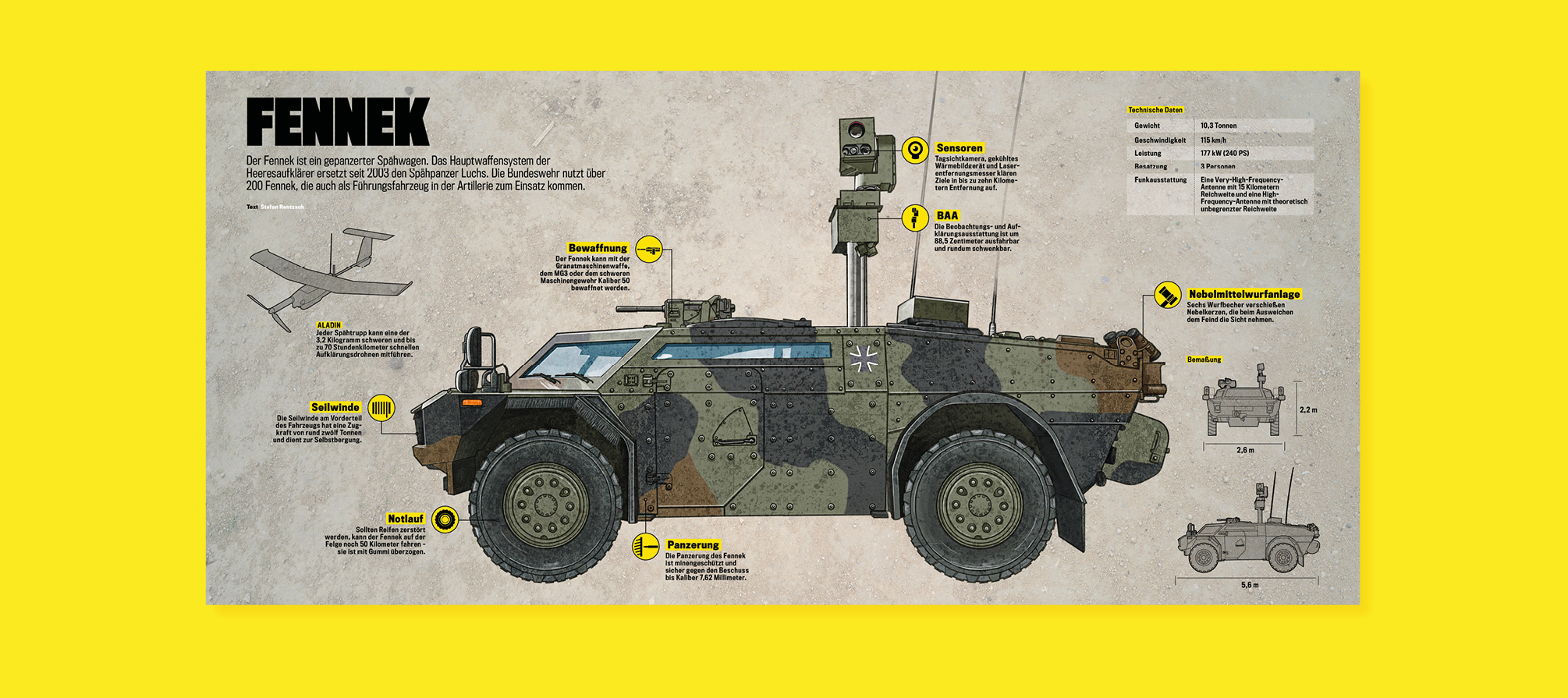 Fennek Infografik Infographics